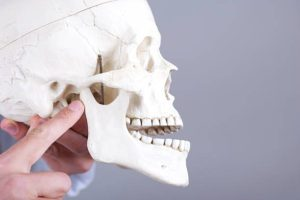 TMJ (Temporomandibular Joint)